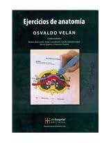 Ejercicios de anatomia / Anatomy Exercises