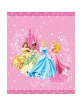 Disney Princess Quilt in Full Queen Size