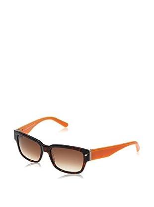 Web Gafas de Sol WE0115 (56 mm) Havana