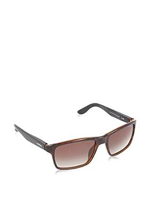 CARRERA Gafas de Sol 8002 LA 2XF (54 mm) Havana
