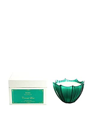 D.L. & Co. Coconut Lime 8-Oz. Pearlized Scallop Candle