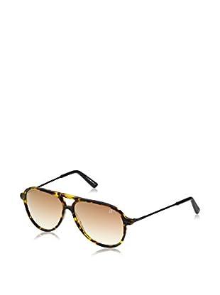 Web Gafas de Sol WE0138 (57 mm) Havana