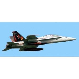 【クリックで詳細表示】1/48 飛行機シリーズ F/A-18D ホーネット 岩国スペシャルマーク 09946