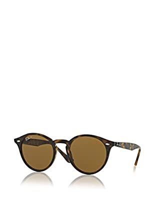 RAY BAN Sunglasses - SHINY DARK HAVANA WITH POLARBROWN LENS