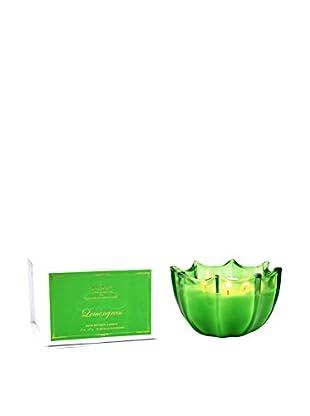D.L. & Co. Lemongrass Scallop Candle