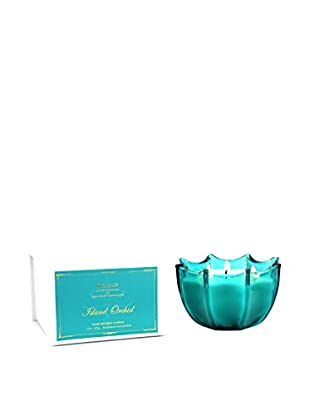 D.L. & Co. Island Orchid Scallop Candle