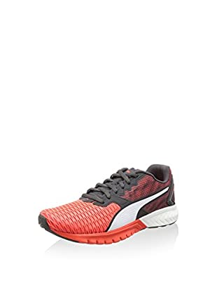 Puma Zapatillas IGNITE Dual