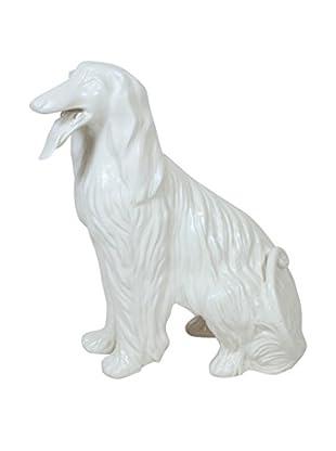 Favaro Cecchetto Italian Afghan Hound, White