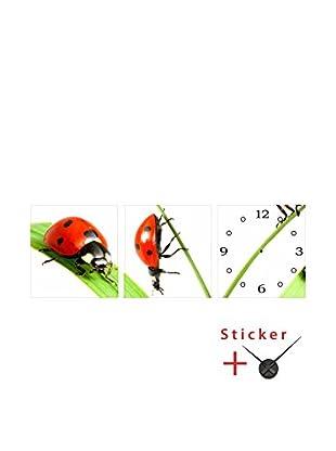 Ambiance Live Wandtattoo 3 tlg. Set Ladybirds (Clock) mehrfarbig