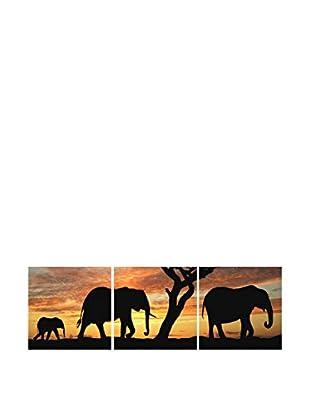 SuperStudio Leinwandbild 3 tlg. Set Sabana Elephant