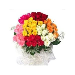 Living Gifts Bunch of 24 Mix Roses