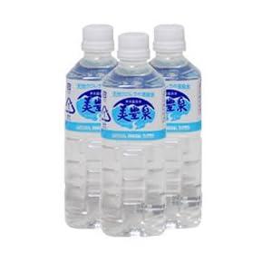 鹿児島 垂水の飲む 温泉水 美豊泉 (びほうせん) 500ml ペットボトル × 40本入り
