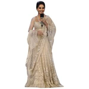 Madhuri Dixit Bollywood Replica Saree, Off White