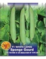 F1 White Long Sponge Gourd