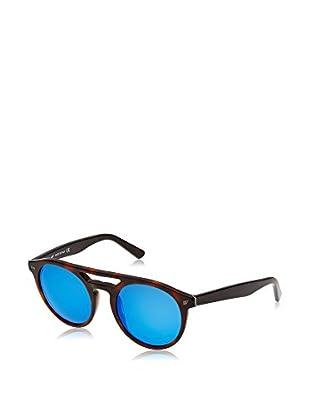 Web Gafas de Sol WE0123 (51 mm) Havana