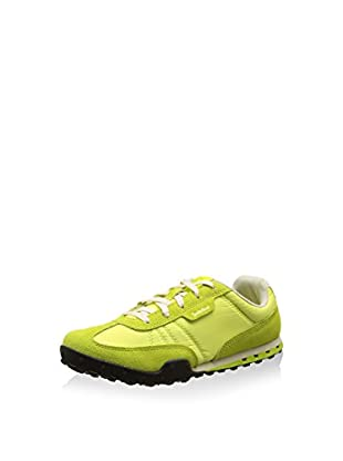 Timberland Sneaker Ek Greeley Low