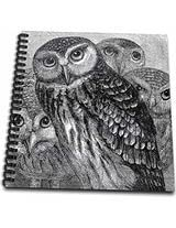 3dRose db1514392 Group of Four Owls Black and White Owl Engraving Etching Detailed Fine Art Birds-Night Animals-Memory Book, 12 by 12-Inch
