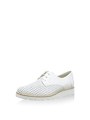 Semler Zapatos
