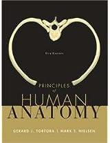 Principles of Human Anatomy 11e (HB)