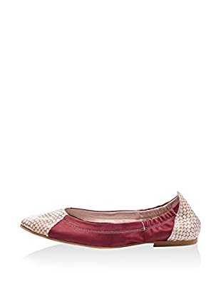 Lizza Shoes Bailarinas Lz-6602