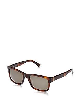 Tod'S Gafas de Sol TO0163 (56 mm) Havana
