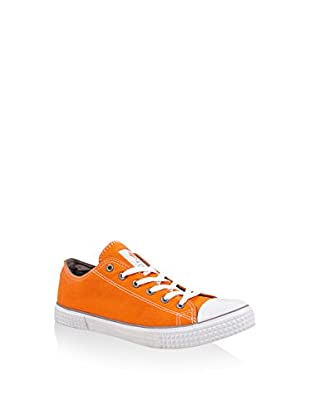 SUMMERFRESH Sneaker Paradiso