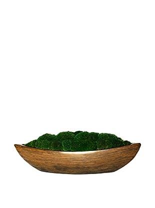 Forever Green Art Moss Zen Boat