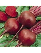 Beet (5 gr Per Packet) (Pack of 2)