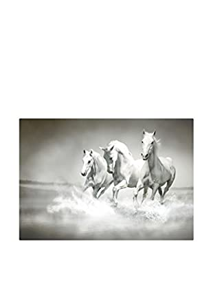 Best seller living Leinwandbild Forefather Of Horse