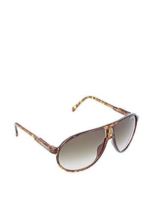 Carrera Sonnenbrille Champion Dafri havanna