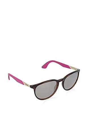 CARRERA Gafas de Sol 19/S UE NB1 (54 mm) Havana