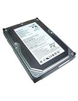 Segate Hard Disk 500 GB