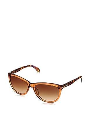 cK Gafas de Sol Ck4220S (56 mm) Teja