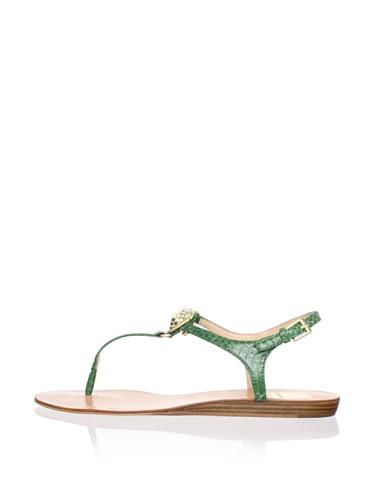 Dolce Vita Women's Isolde Sandal (Green Snake)
