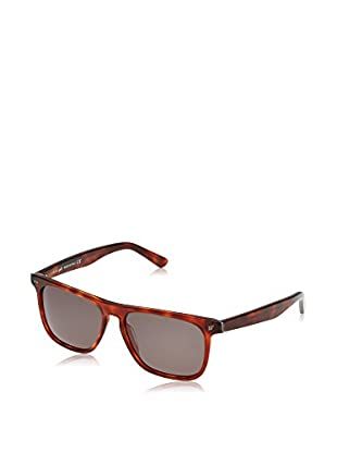 Web Gafas de Sol WE0122 (56 mm) Havana
