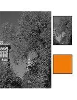 Hoya 62mm Orange Glass Filter
