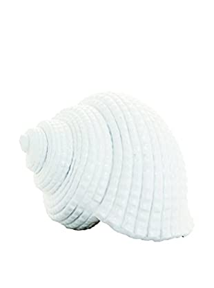 Torre & Tagus Conch Décor Shell, Small