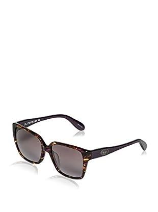 La Martina Sonnenbrille 50103 (56 mm) havanna