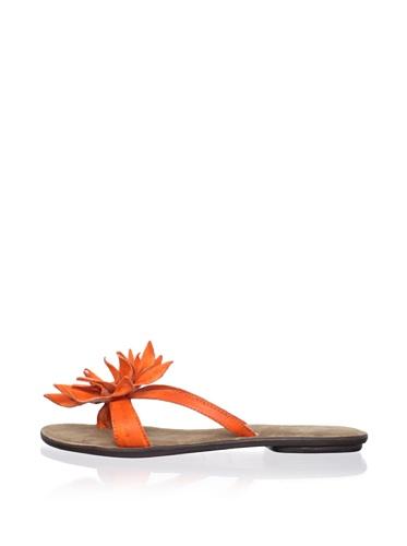 Chocolat Blu Women's Tess Thong Sandal (Orange)