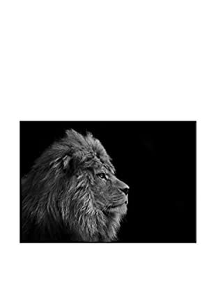 Male Lion Photography On Mounted Metal