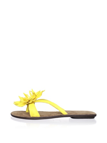 Chocolat Blu Women's Tess Thong Sandal (Yellow)