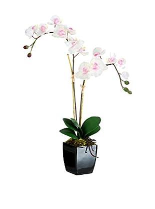 Flor Artificial Orquídea Blanco
