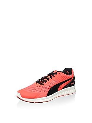 Puma Sneaker Ignite V2