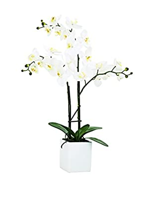 Torre & Tagus White Faux Potted Orchid