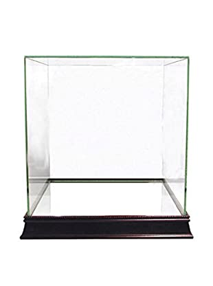 Steiner Sports Memorabilia Glass Basketball Case