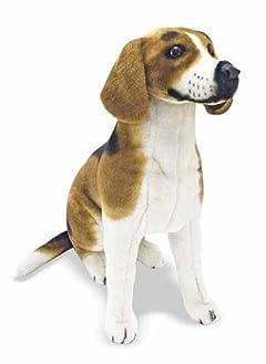 「生涯を革命にささげた犬」天寿まっとうまでの道のり