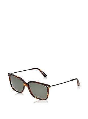 Web Gafas de Sol WE0120 (56 mm) Havana