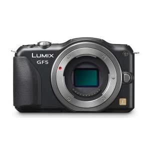 Panasonic Lumix DMC-GF5WGC 12MP Digital SLR Camera (Black) Body Only, Camera Case