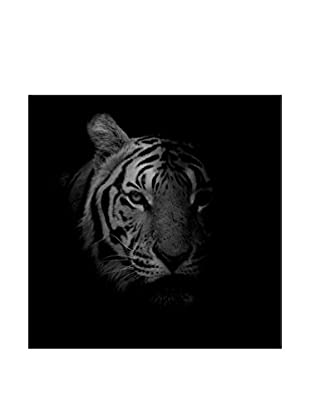 Tiger Photography On Mounted Metal