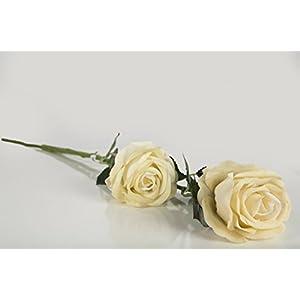 Casa De Regalos White Rose